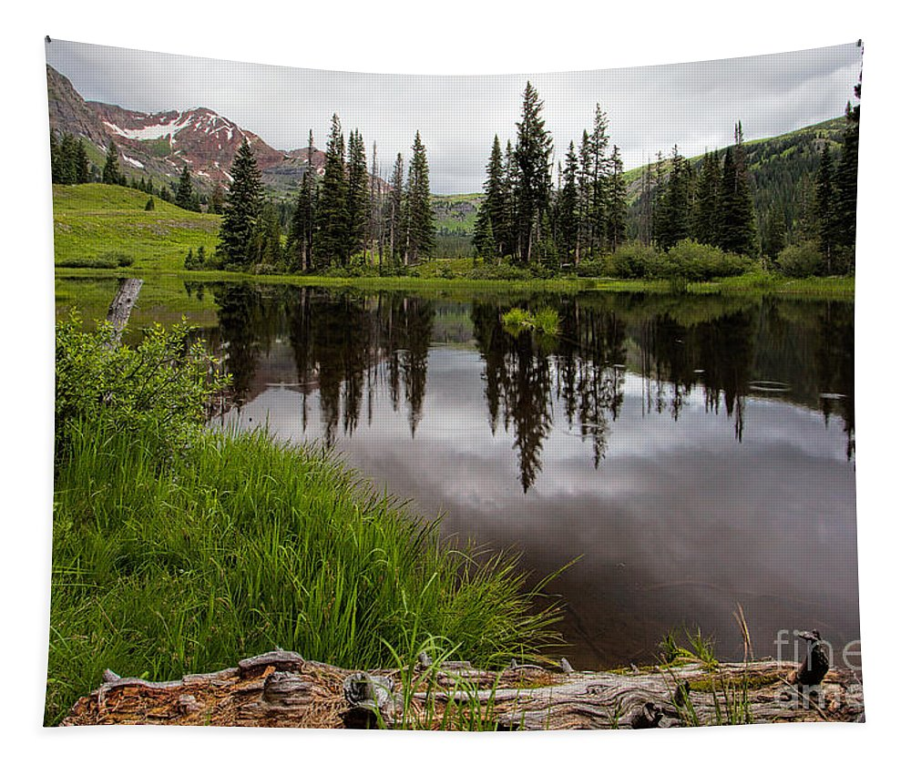 Tapestry featuring the photograph A Little Rain by Jim Garrison