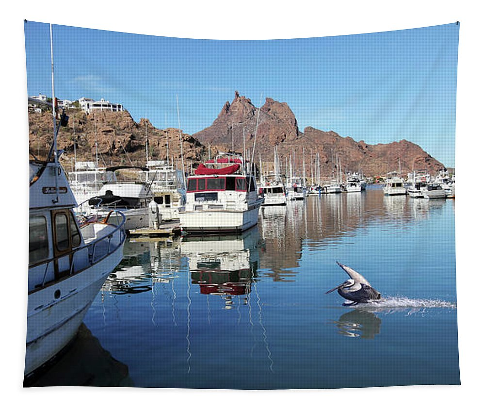 Travel Tapestry featuring the photograph A Pelican Lands In The Old San Carlos Marina, Guaymas, Sonora, M by Derrick Neill