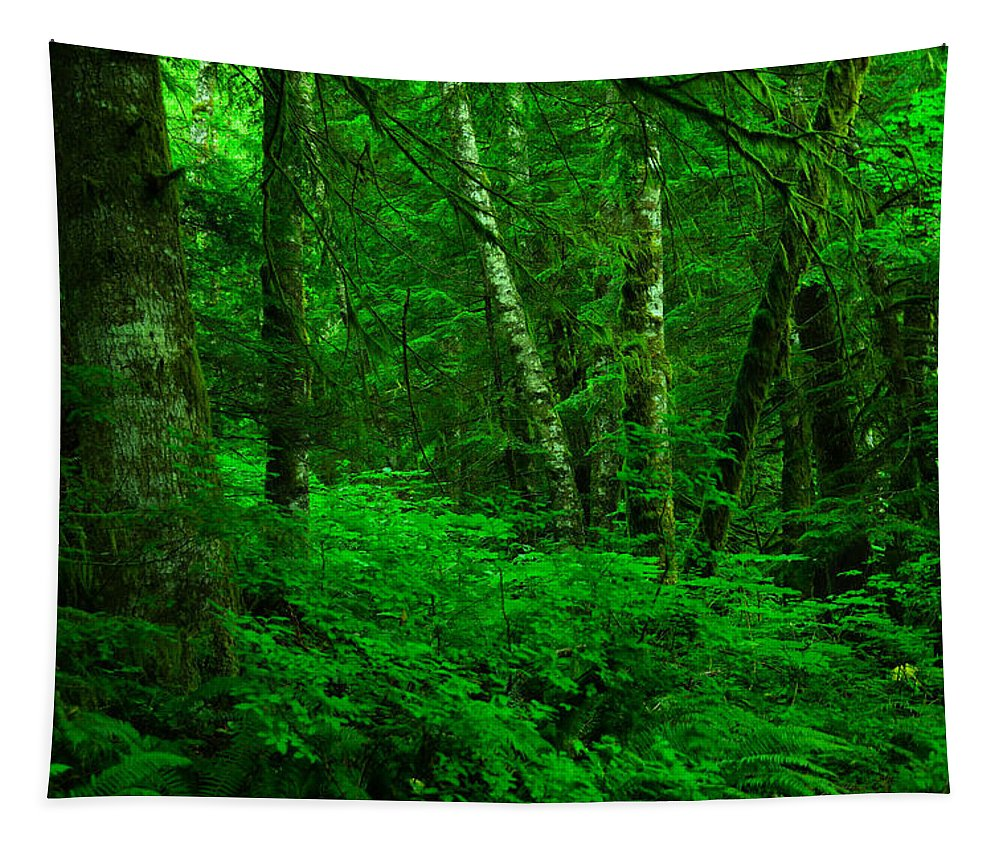 Forest Tapestry featuring the photograph A Place In The Forest by Jeff Swan