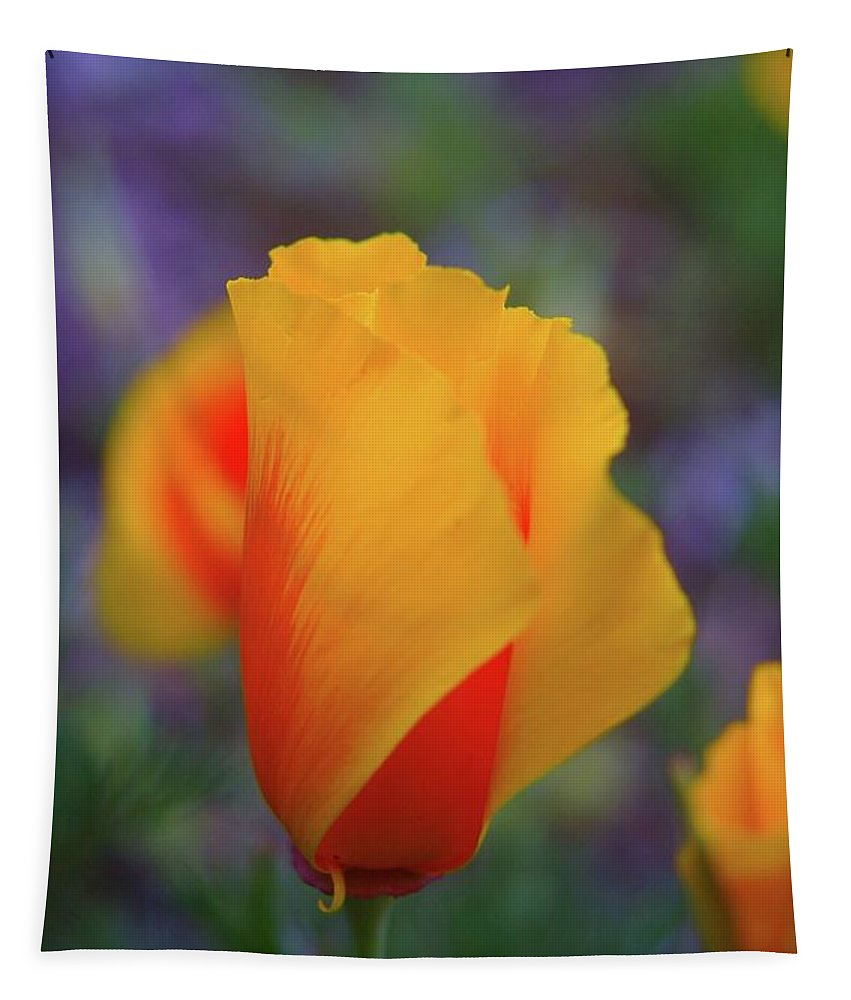 Poppies Tapestry featuring the photograph A Poppy Furled by Jeff Swan