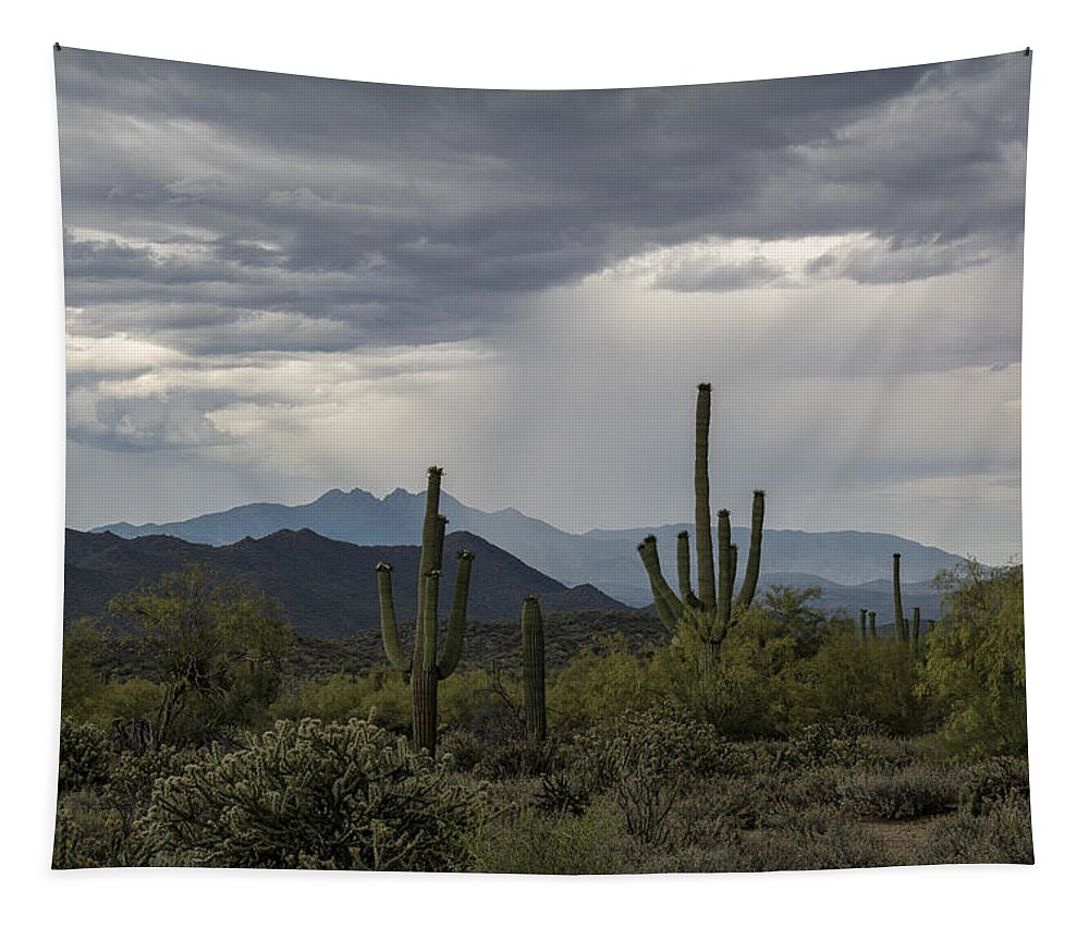 Arizona Tapestry featuring the photograph A Rainy Desert Afternoon by Saija Lehtonen