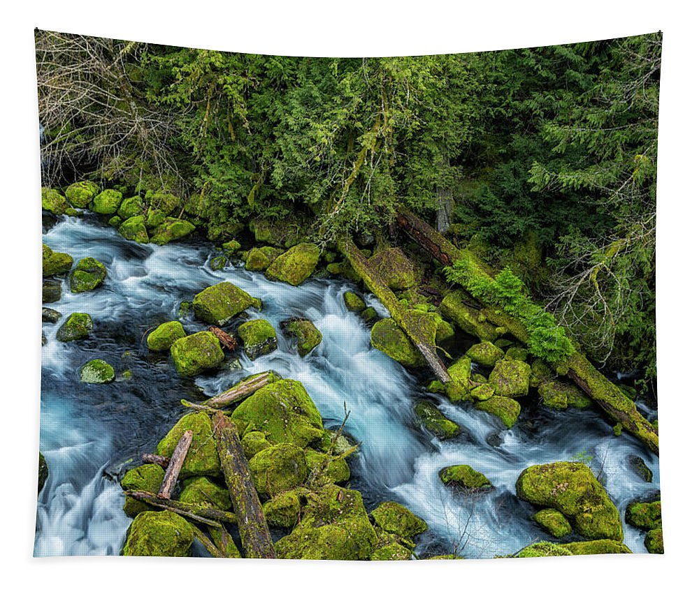 Mckenzie River Tapestry featuring the photograph A River's Path by Belinda Greb