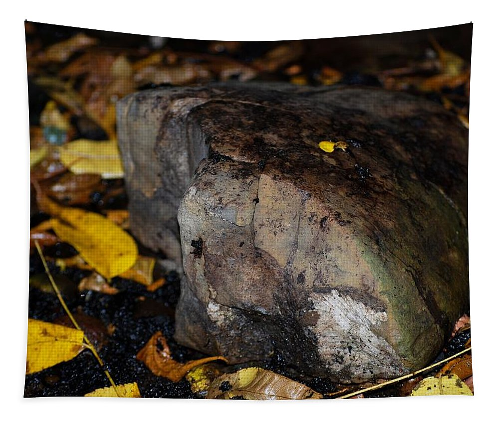 Rock Tapestry featuring the photograph A Rock Amongst Decay by Carol J Deltoro