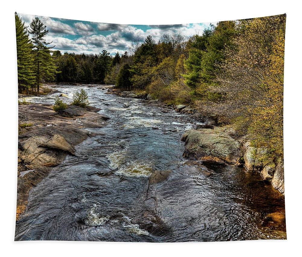 A Spring Day At Little Woodhull Creek Tapestry featuring the photograph A Spring Day At Little Woodhull Creek by David Patterson