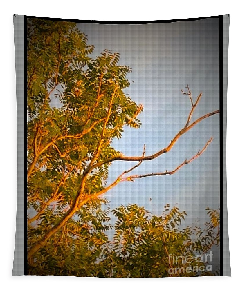 Sky Tapestry featuring the digital art A Sumac Tree And A Bare Branch by Debra Lynch