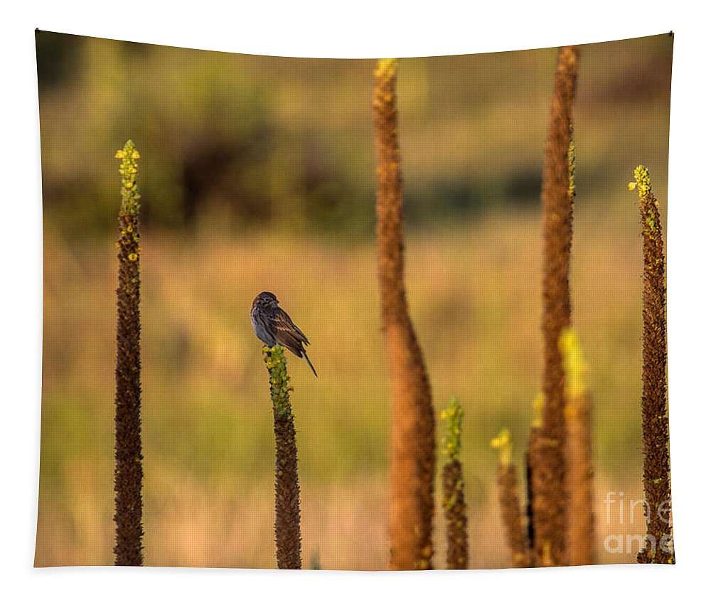 Bird Tapestry featuring the photograph Statuary by Jim Garrison