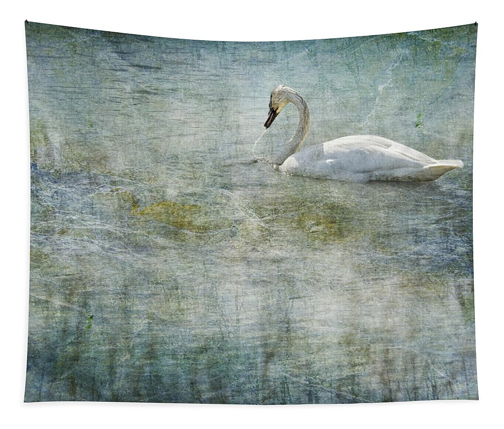 Swan Tapestry featuring the photograph A Swan's Reverie by Belinda Greb