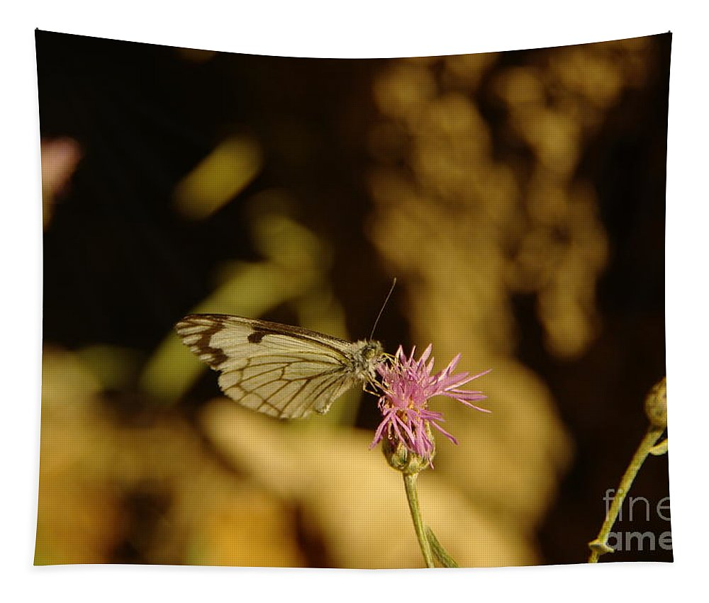 Insects Tapestry featuring the photograph A Tilting Butterfly by Jeff Swan