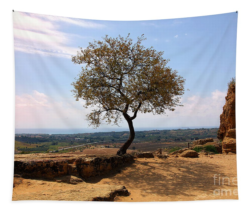 Tree Tapestry featuring the photograph A Tree And A Rock by Madeline Ellis