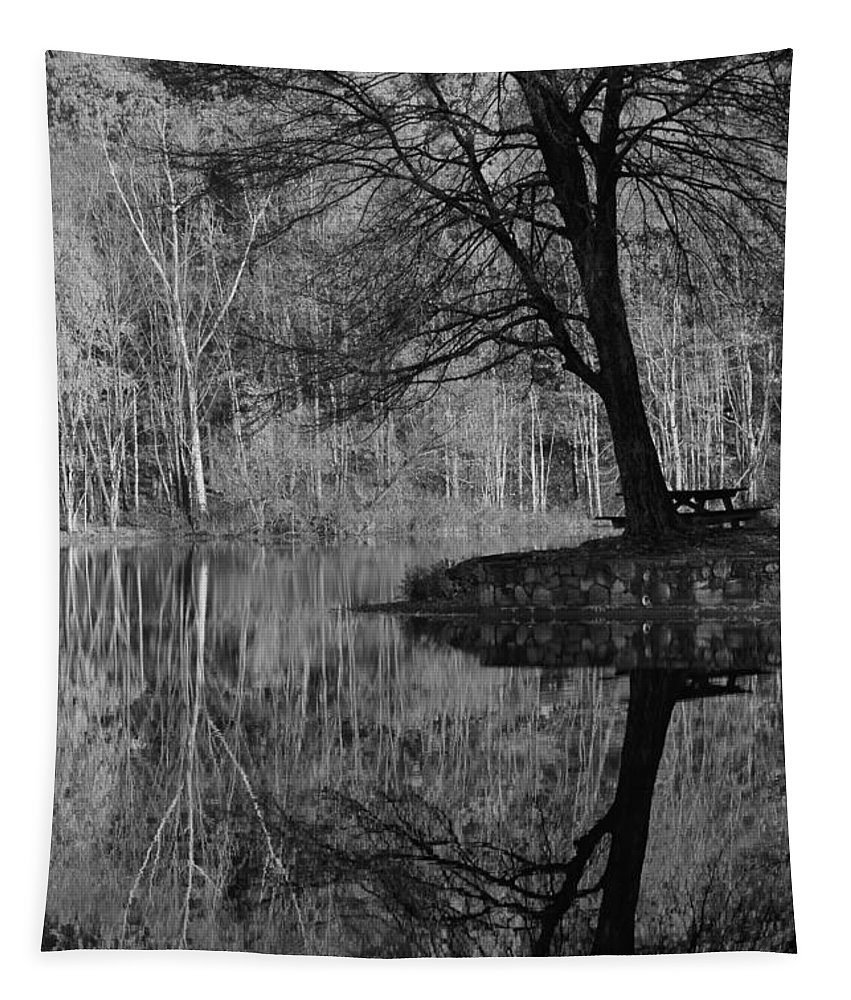 Tree Tapestry featuring the photograph A Tree Of A Different Color by Karol Livote