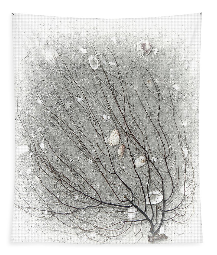 Beach Tapestry featuring the photograph A Tree On The Beach #2 - Seaweed And Shells by Mitch Spence