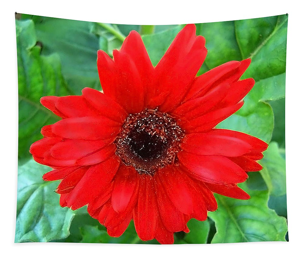 Flower Tapestry featuring the photograph A True Red by Sandi OReilly