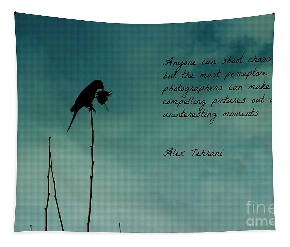 Parrot Tapestry featuring the photograph A Verse For Photographers by Clare Bevan