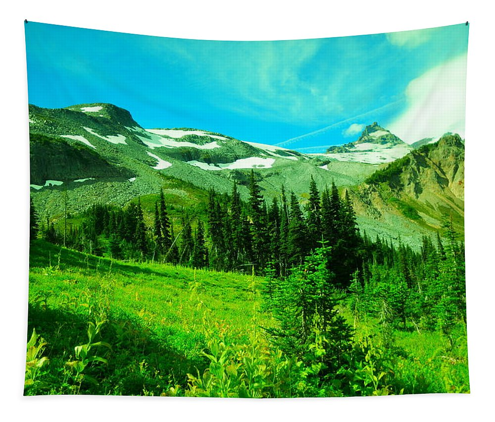 Mountains Tapestry featuring the photograph A View Into Paradise by Jeff Swan