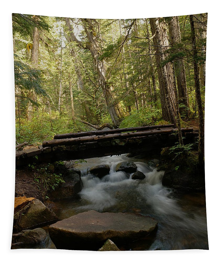 Walk Bridge Tapestry featuring the photograph A Walk Bridge In Paradise by Jeff Swan