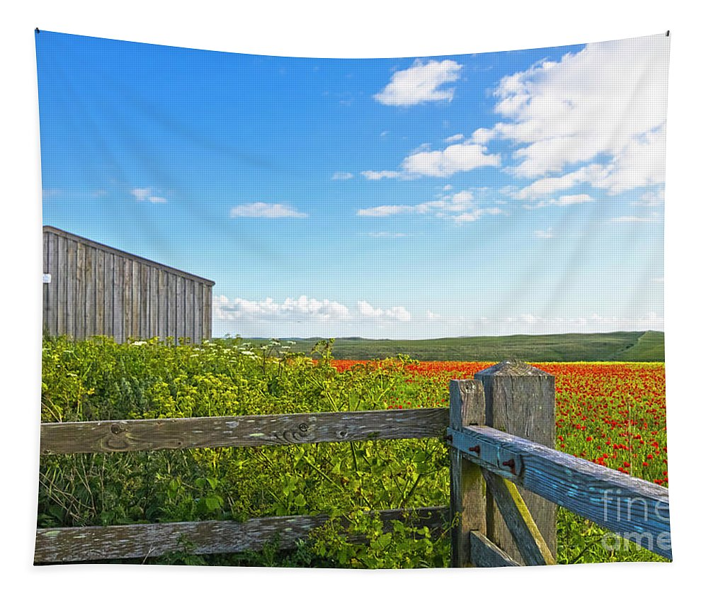 West Pentire Tapestry featuring the photograph A West Pentire Farm by Terri Waters