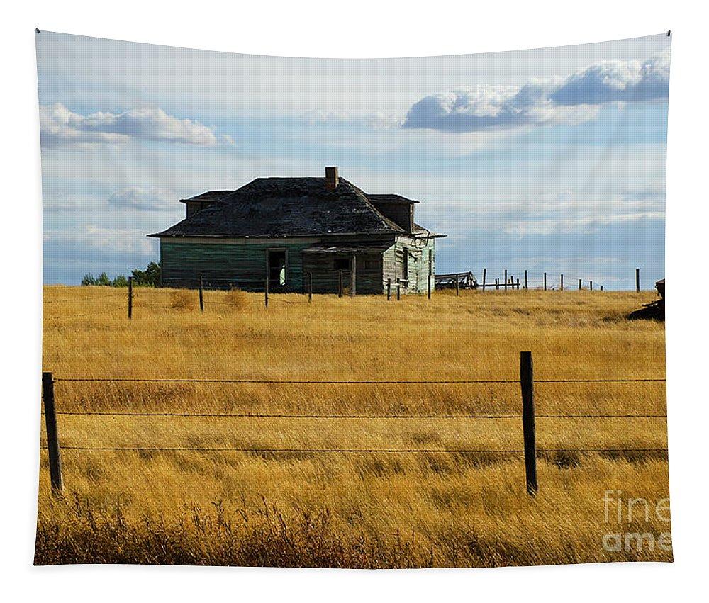 Parkbeg Saskatchewan Tapestry featuring the photograph Abandoned Homestead Saskatchewan by Bob Christopher