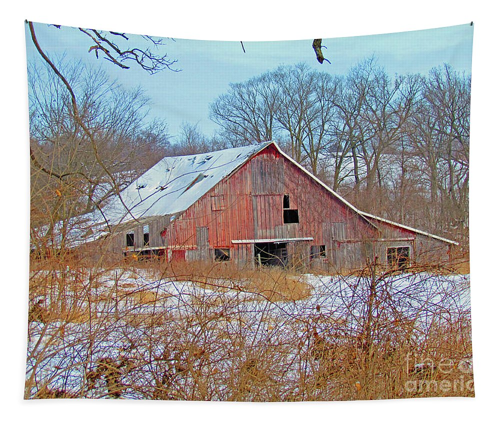 Barn Tapestry featuring the photograph Abandoned by Nicole Engelhardt