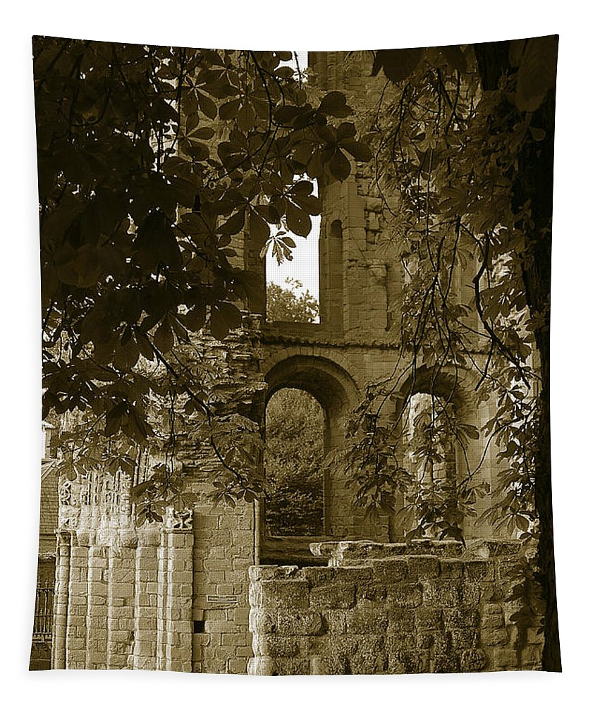 Abbey Tapestry featuring the photograph Abbey In Kelso. by Elena Perelman
