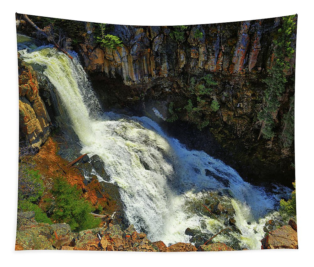 Undine Falls Tapestry featuring the photograph Above Undine Falls by Greg Norrell