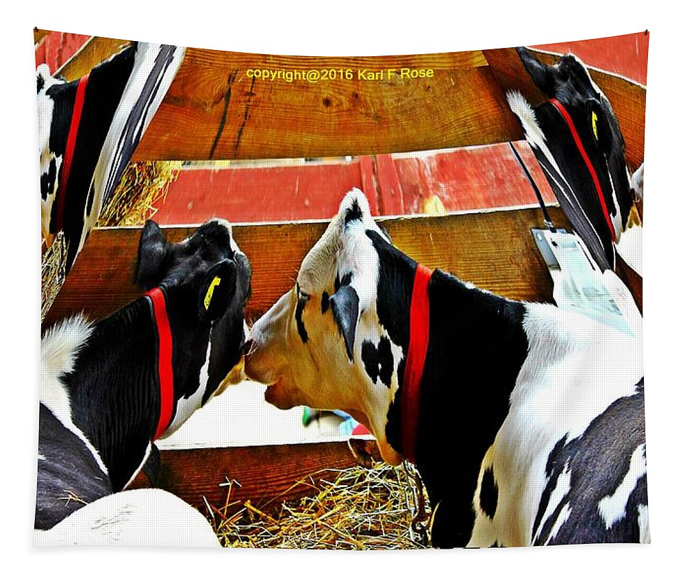 Cows Tapestry featuring the photograph Abstract Cows by Karl Rose
