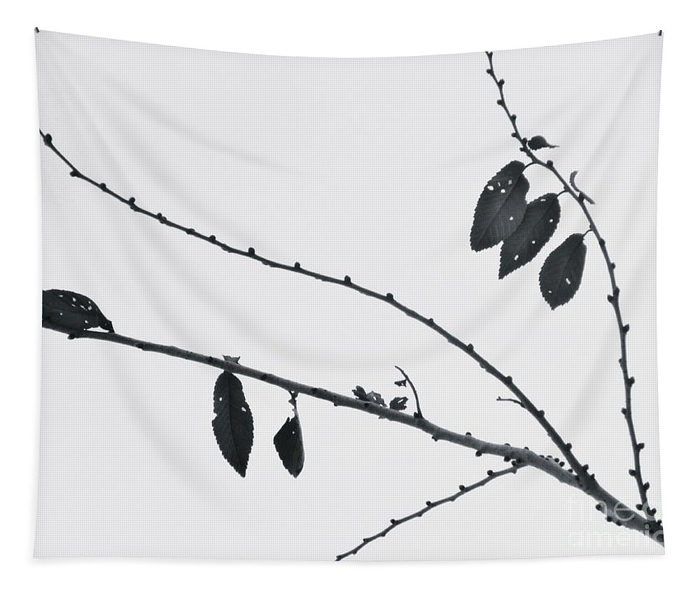 Leaves Tapestry featuring the photograph Across The Pale Sky by Tara Turner