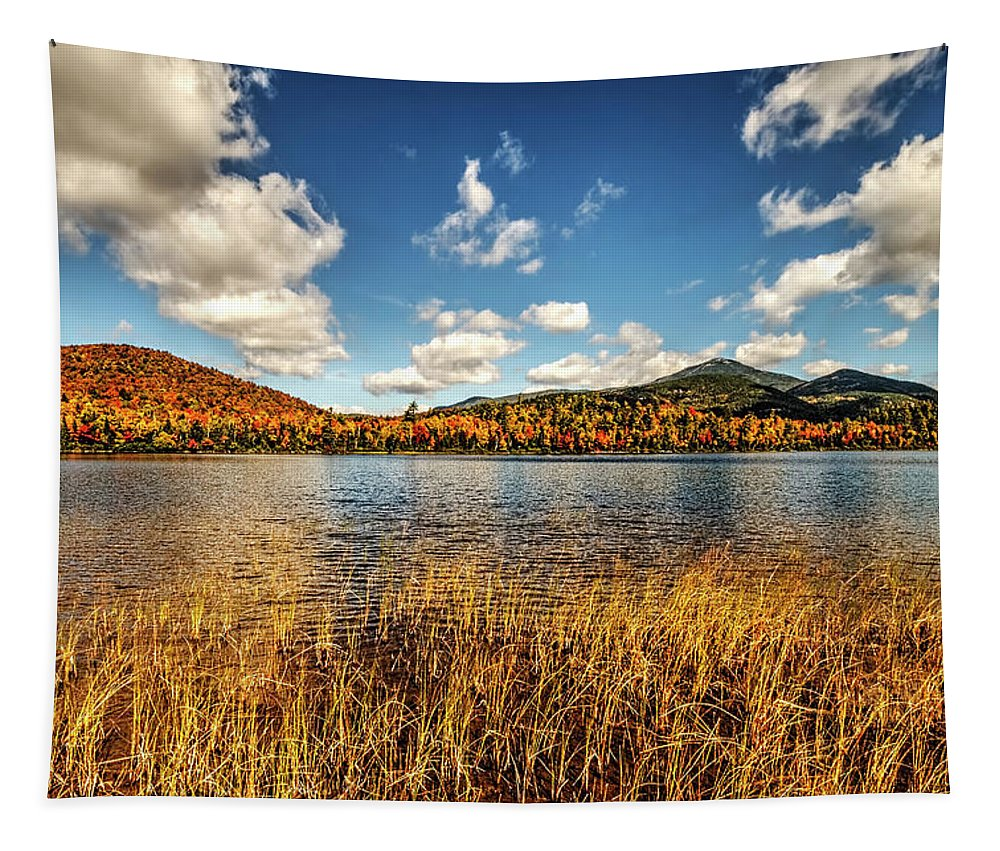 Autumn Photograph Tapestry featuring the photograph Adirondack View 3 by Tony Beaver