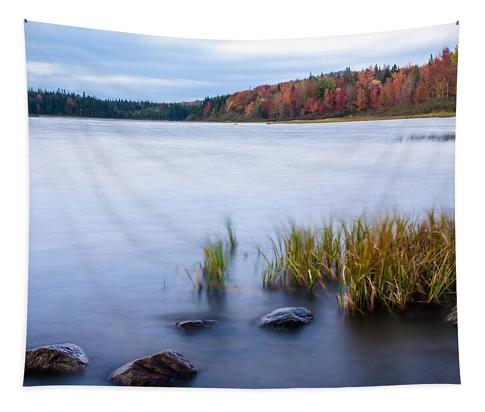 Adirondack Tapestry featuring the photograph Adirondack View 4 by Tony Beaver
