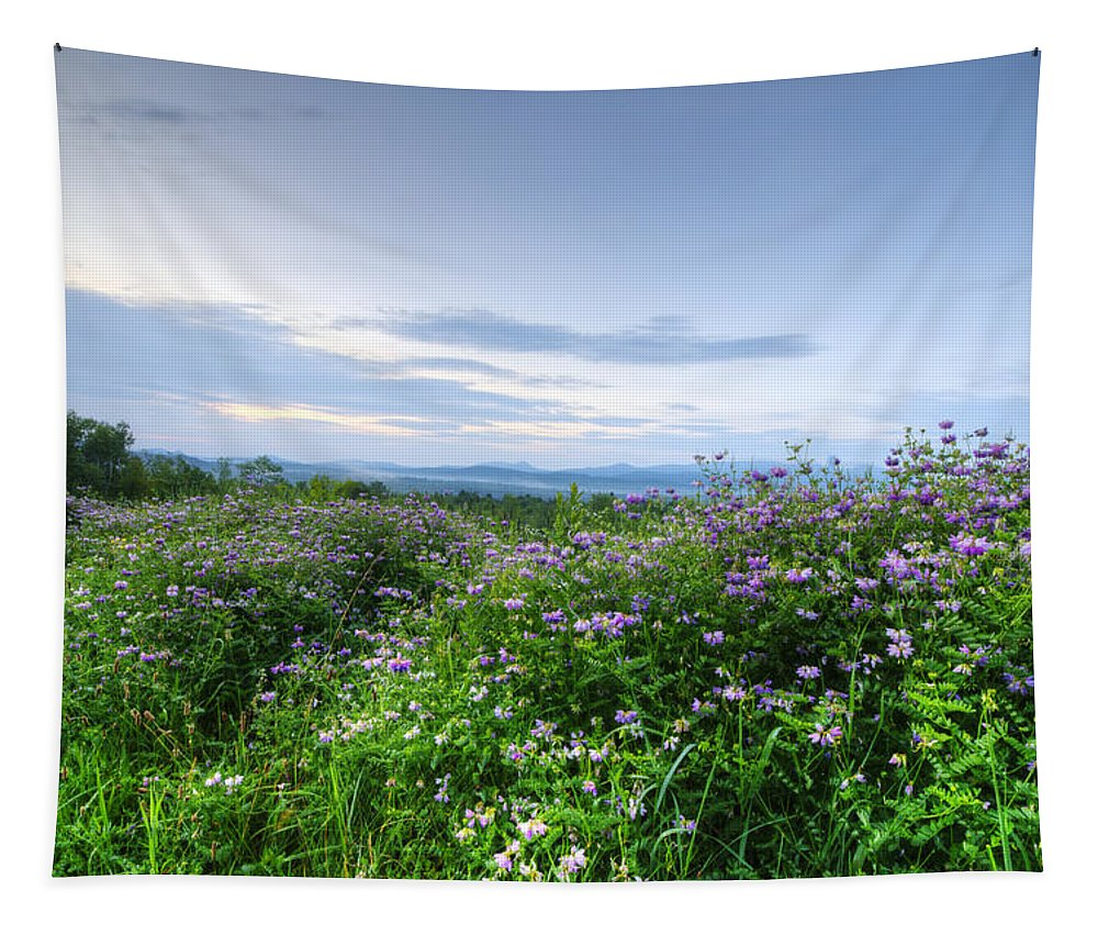 Adirondack Mountains Tapestry featuring the photograph Adirondack View 6 by Tony Beaver