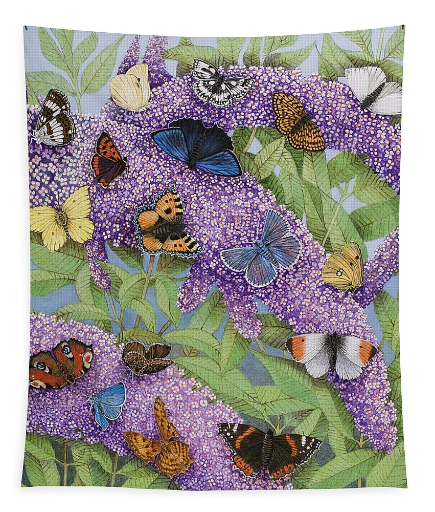 Butterflies Tapestry featuring the painting Adventuring by Pat Scott