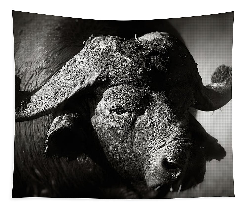 Buffalo Tapestry featuring the photograph African Buffalo Bull Close-up by Johan Swanepoel
