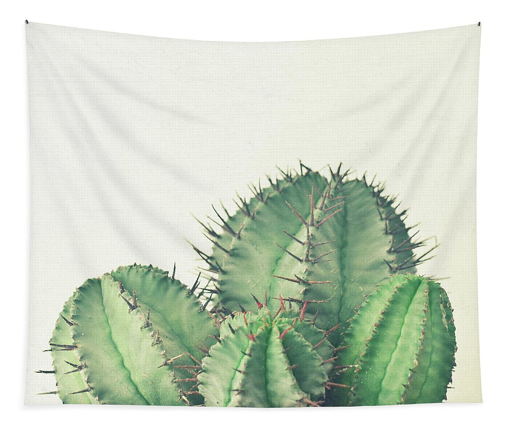 Cactus Tapestry featuring the photograph African Milk Barrel by Cassia Beck