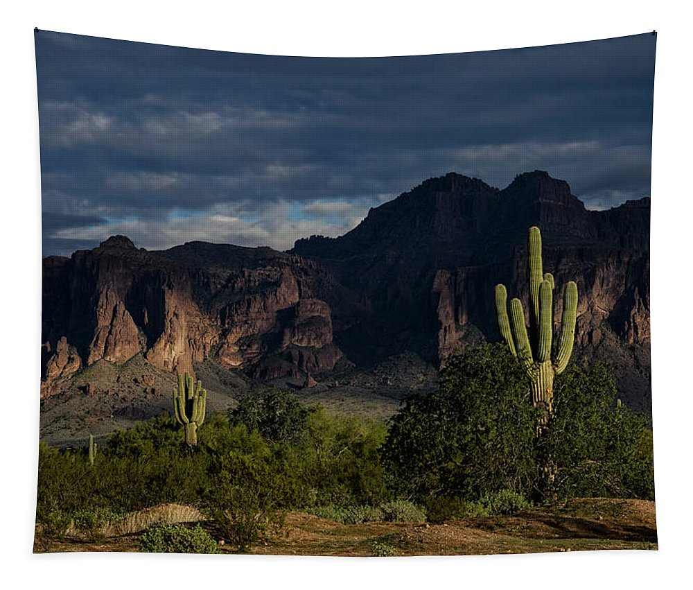 Arizona Tapestry featuring the photograph After The Rain In The Superstitions by Saija Lehtonen