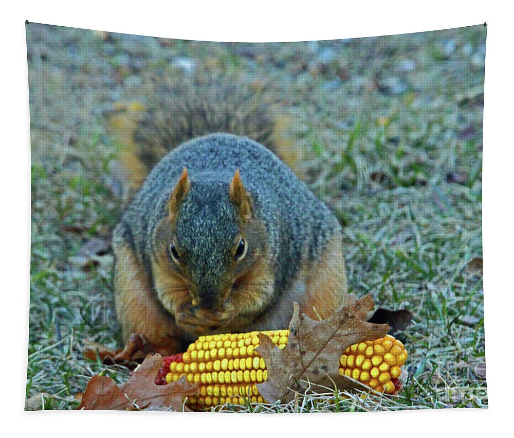 Squirrel Tapestry featuring the photograph Afternoon Delight by Nicole Engelhardt