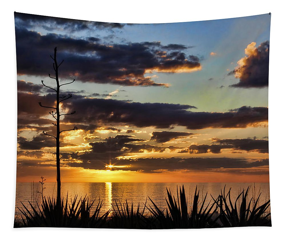 Century Plant Tapestry featuring the photograph Agave Sunset by HH Photography of Florida