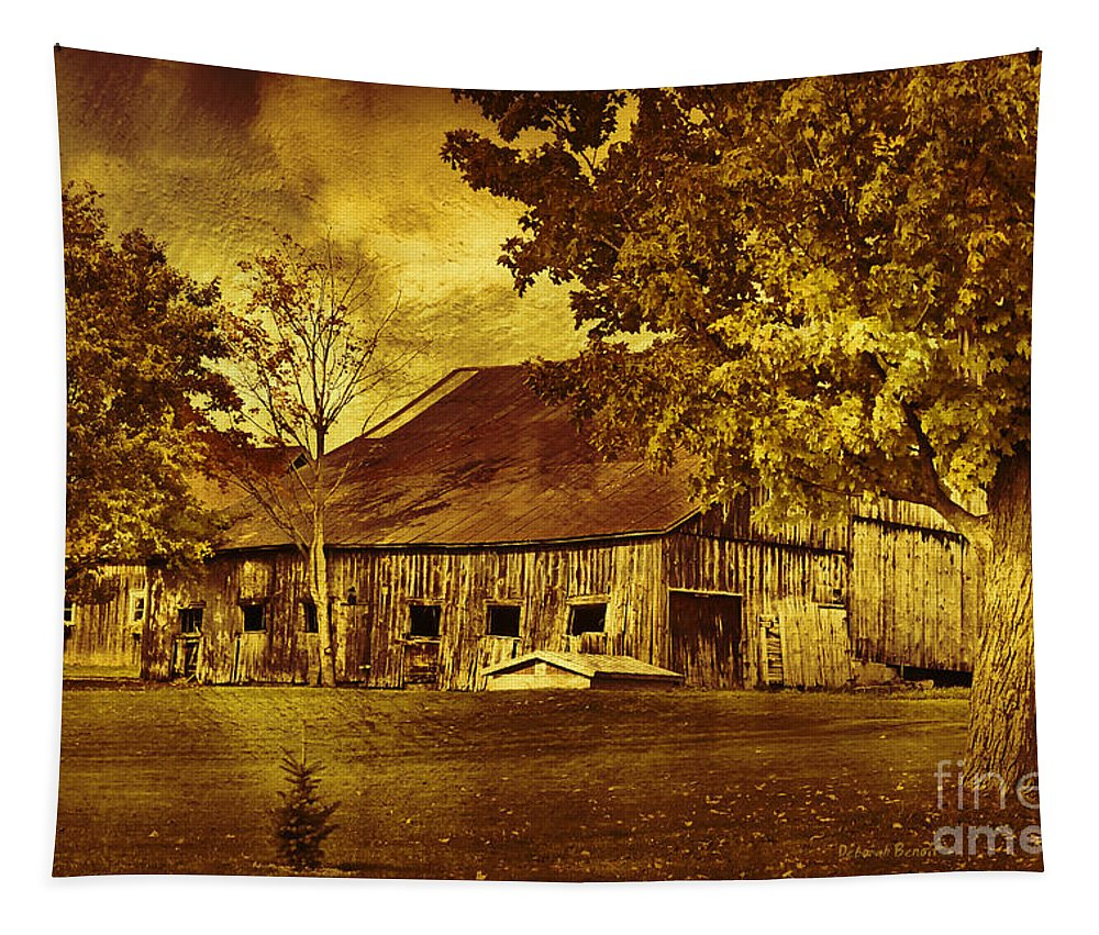 Rustic Landscape Tapestry featuring the photograph Aged Rustic Beauty by Deborah Benoit