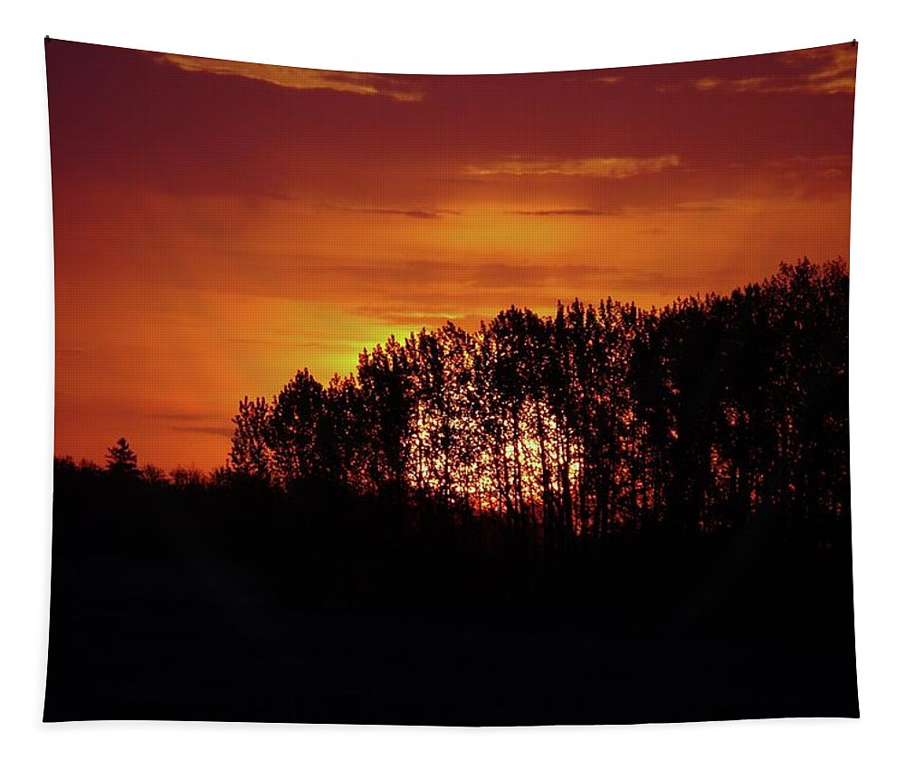 Tapestry featuring the photograph Alberta Sunset by Jeff Swan
