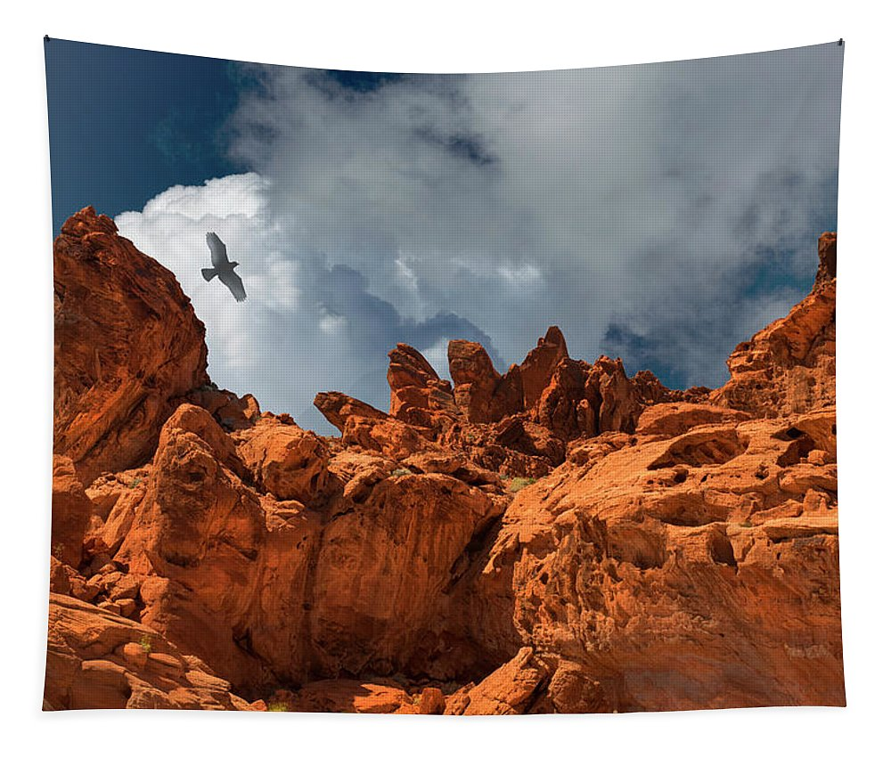 Landscape Tapestry featuring the photograph Alien Landscape Valley Of Fire by Frank Wilson