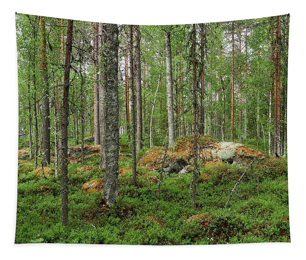 Finland Tapestry featuring the photograph All Green by Jouko Lehto