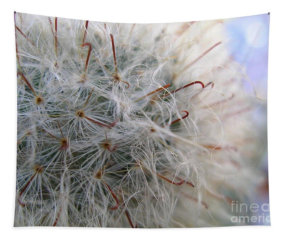 Flowers Tapestry featuring the photograph Allium Sativum by Jolanta Anna Karolska