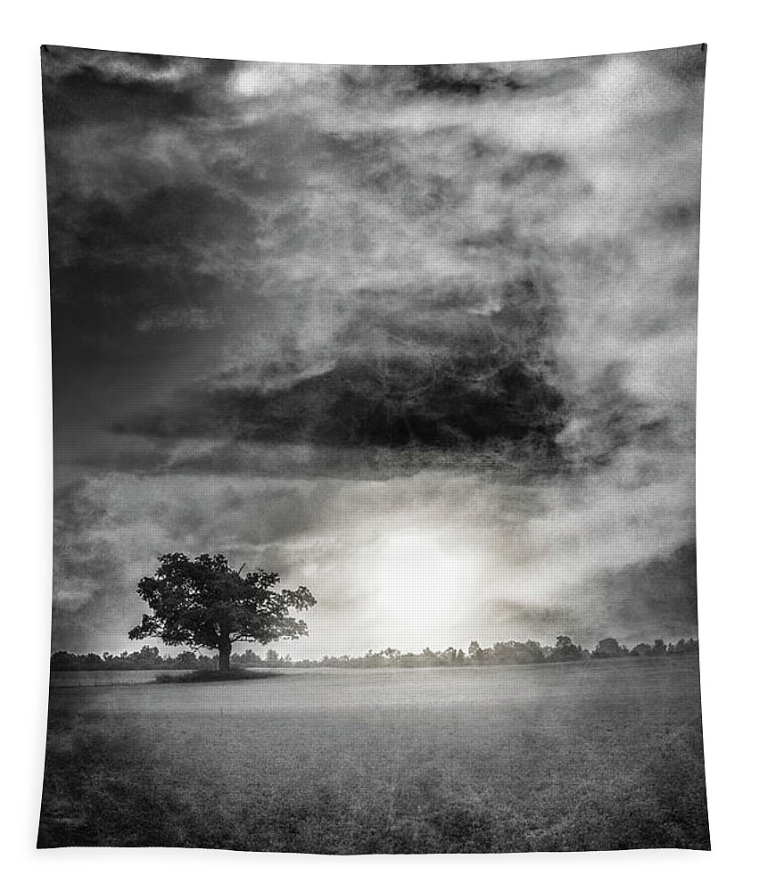 Appalachia Tapestry featuring the photograph Alone In The Dark by Debra and Dave Vanderlaan