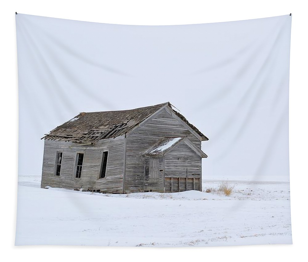 School Tapestry featuring the photograph Alone In The Snow by Bonfire Photography