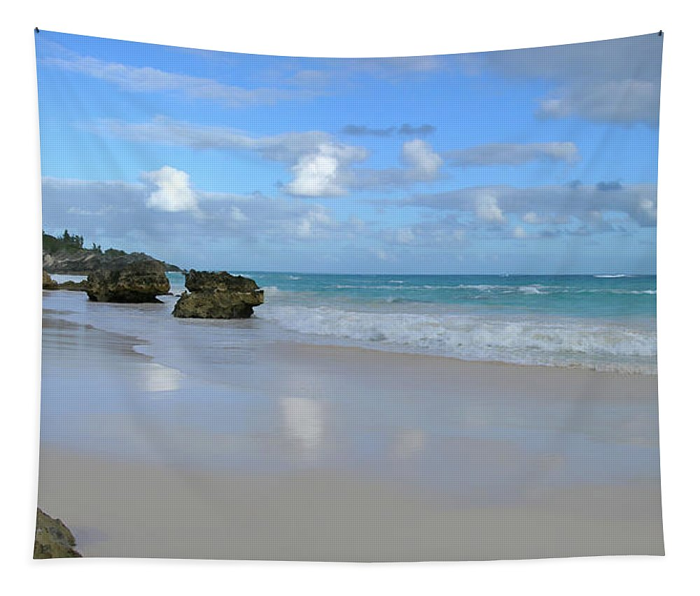 Atlantic Tapestry featuring the photograph Along The Beach by Mary Lane