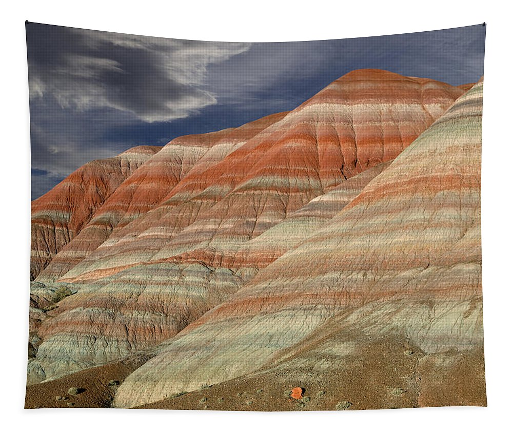 Paria Tapestry featuring the photograph Along The Paria by Kathleen Bishop