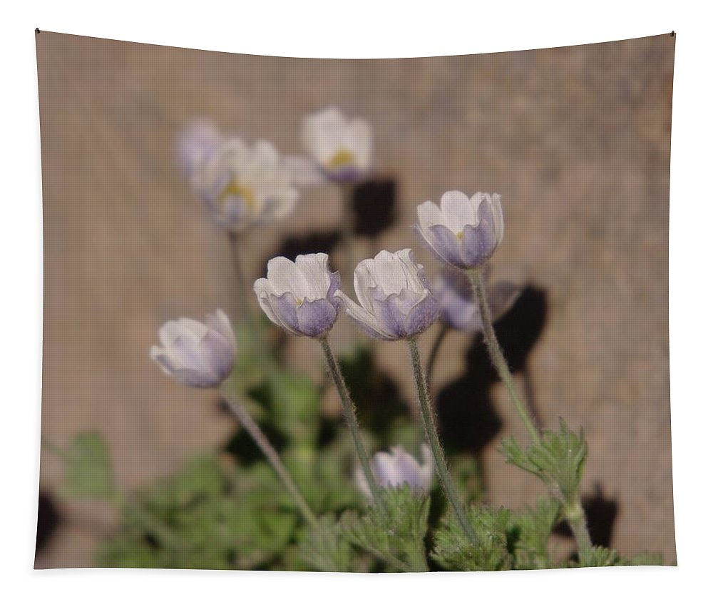 Flowers Tapestry featuring the photograph Alpine Flowers by Jeff Swan