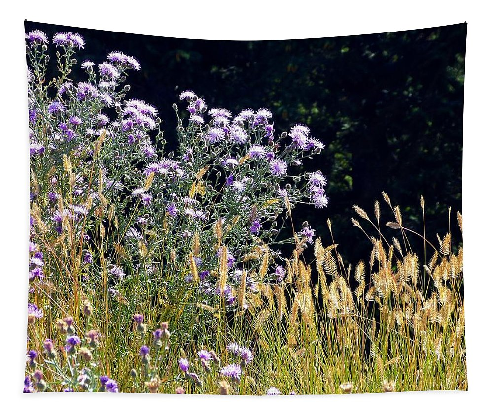 #alpinethistlesandgrasses Tapestry featuring the photograph Alpine Thistles And Grasses by Will Borden