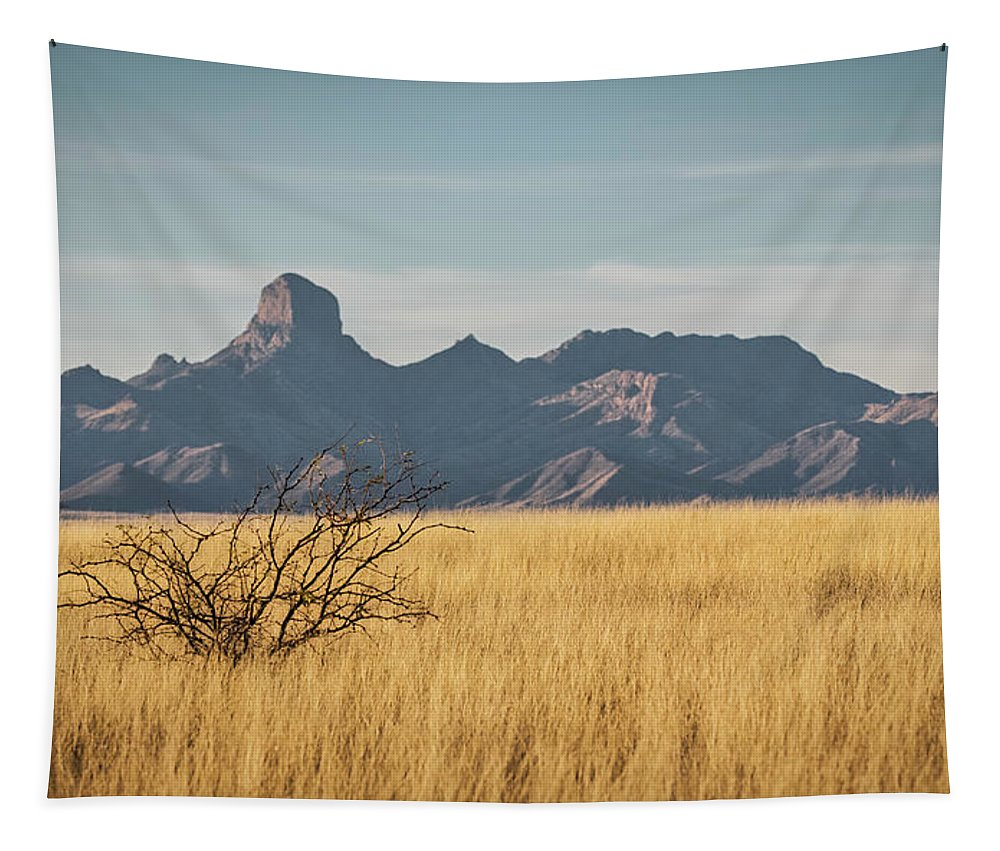 Arizona Tapestry featuring the photograph Altar Valley by Saija Lehtonen