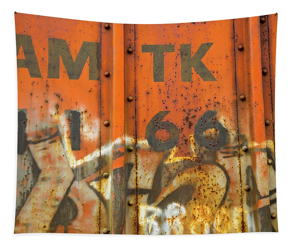 Am Tk Tapestry featuring the photograph Am Tk by Karol Livote