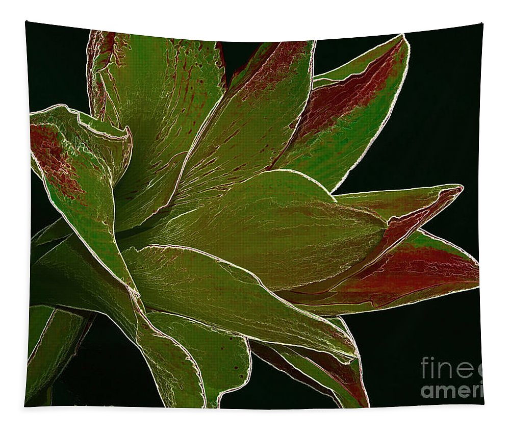 Amaryllis Flower Tapestry featuring the photograph Amaryllis Art by Deborah Benoit
