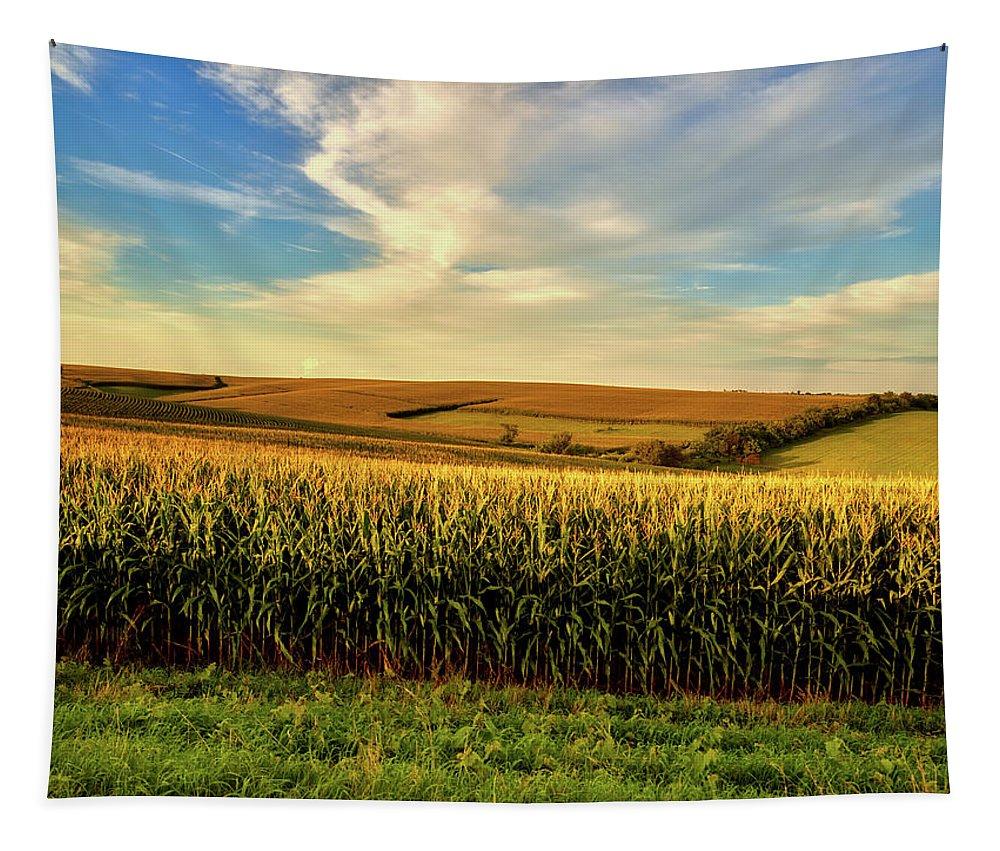 Jones County Tapestry featuring the photograph Amber Waves Of Grain by Mountain Dreams